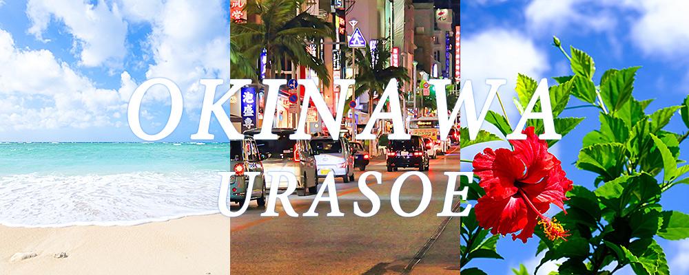 OKINAWA 沖縄イメージ 海・首里城・ハイビスカス